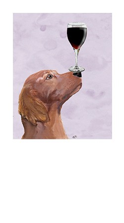 Wine Dogs of Sonoma Image